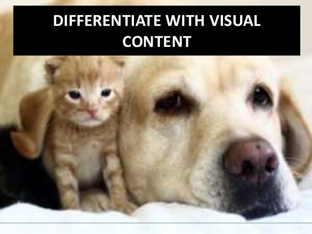 DIFFERENTIATE WITH VISUAL  CONTENT