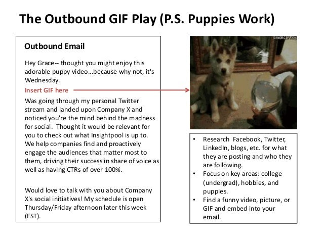 The Outbound GIF Play (P.S. Puppies Work)  Outbound Email  Hey Grace-- thought you might enjoy this  adorable puppy video....