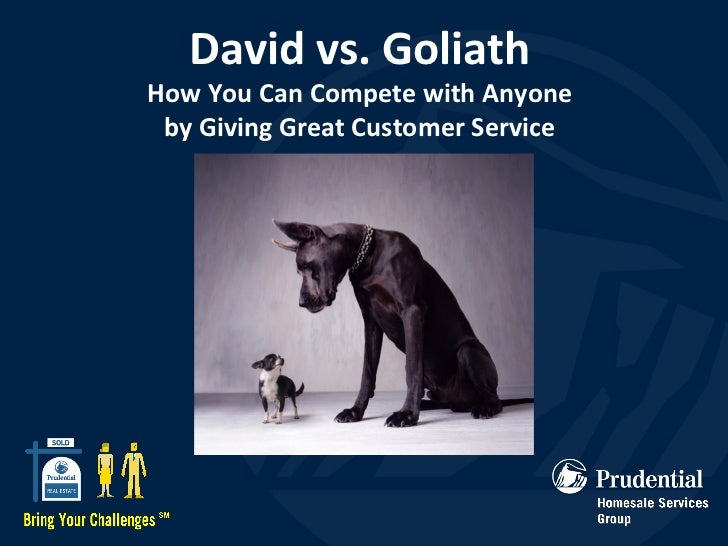 David vs. Goliath How You Can Compete with Anyone by Giving Great Customer Service