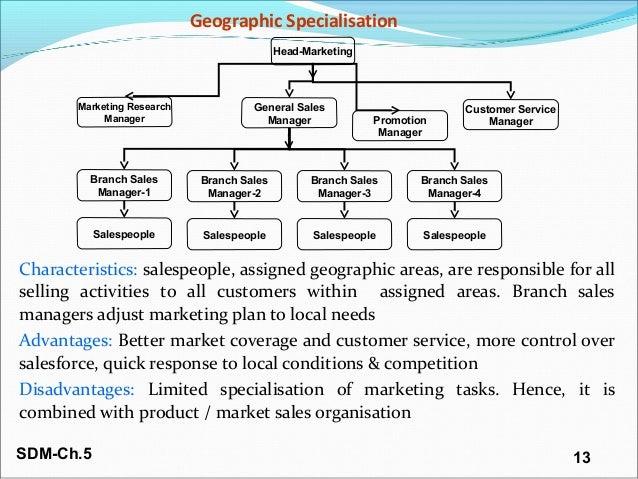 Sales organisation sales force management(2)