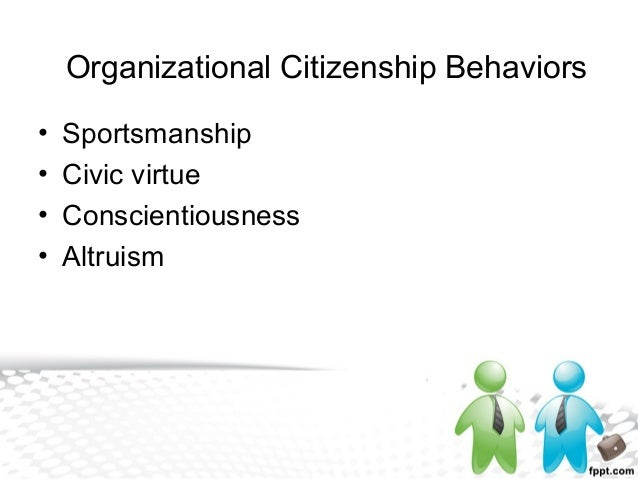 understanding organizational citizenship behaviors Organizational citizenship behavior (ocb): evaluating organizational efficiency and success through employee performance in israeli public management eran vigoda-gadot abstract organizational citizenship behavior (ocb) is a unique aspect of individual activity at work, first mentioned in the early 1980s.