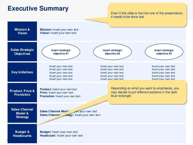 Sales Strategy and Plan Template in Powerpoint   By ex-McKinsey Consultants Slide 3