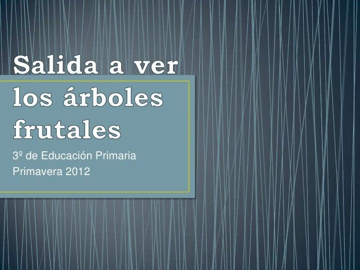 3º de Educación PrimariaPrimavera 2012