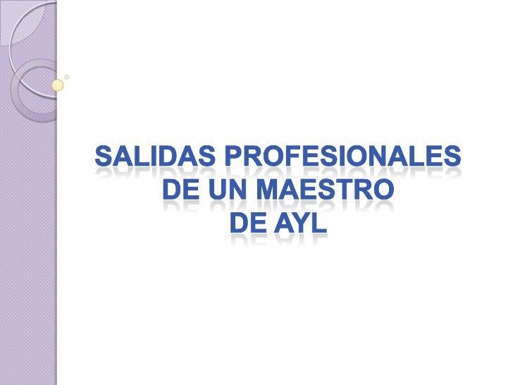 SALIDAS PROFESIONALES DE UN MAESTRO DE AYL<br />