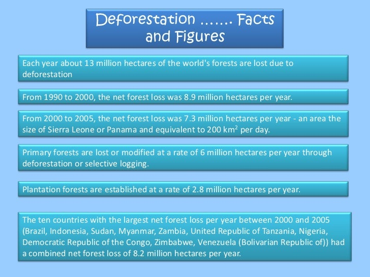 Importance of Forests, Functions of Forests, Deforestation, Sustainab…