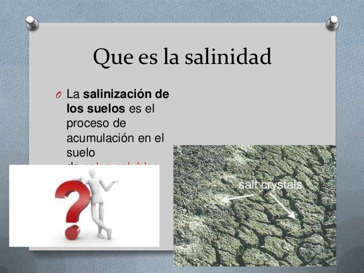 Salinidad de los suelos agricolas for Que es la clausula suelo de los bancos