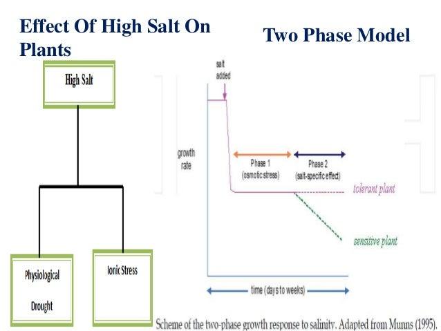 stress tolerance in plants pdf