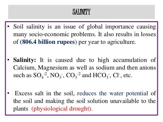 Salinity stress tolerance in plants master seminar