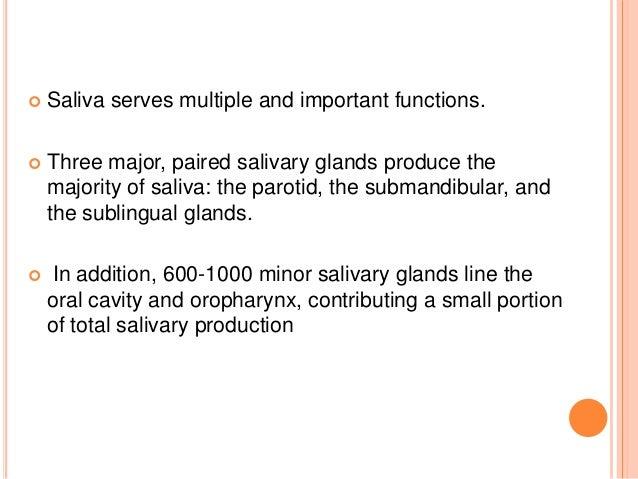 relationship between saliva and taste