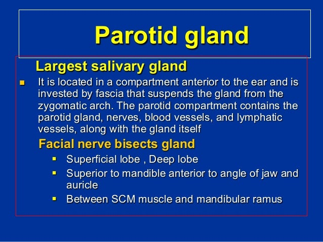 Salivary glands diseases