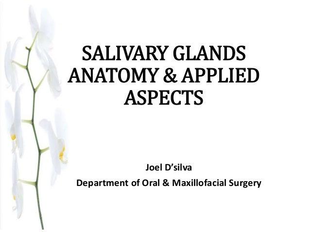 Salivary glands anatomy & applied aspects