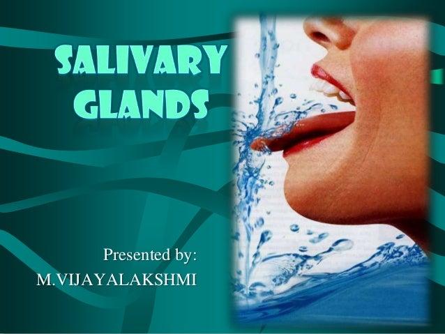 Salivary glands ppt vijji Slide 2