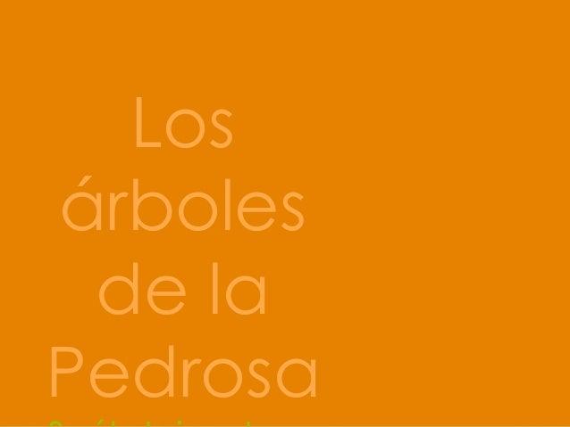 Los árboles de la Pedrosa