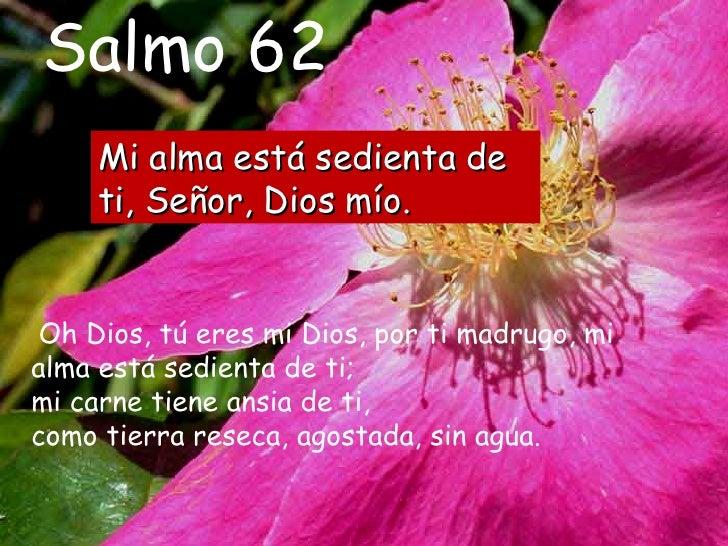 Resultado de imagen para Mi alma está sedienta de ti, Señor, Dios mío  Oh Dios, tú eres mi Dios, por ti madrugo