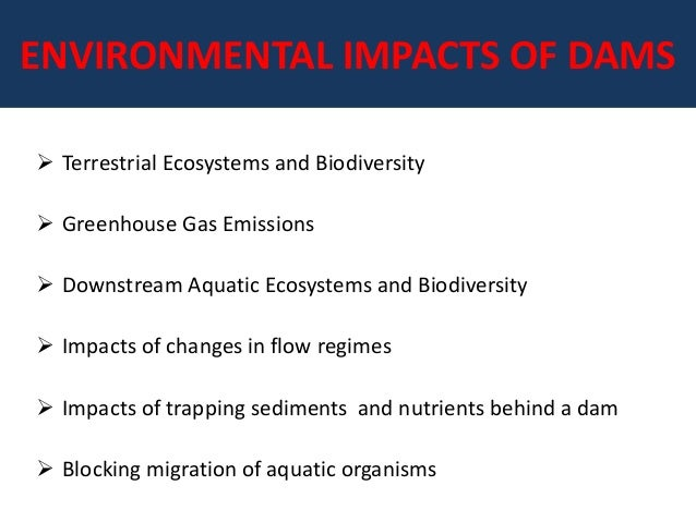 environmental impacts from dam construction Brown, ph, et al, 2008 modeling the costs and benefits of dam construction  from a multidisciplinary perspective, journal of environmental management ( 2008).