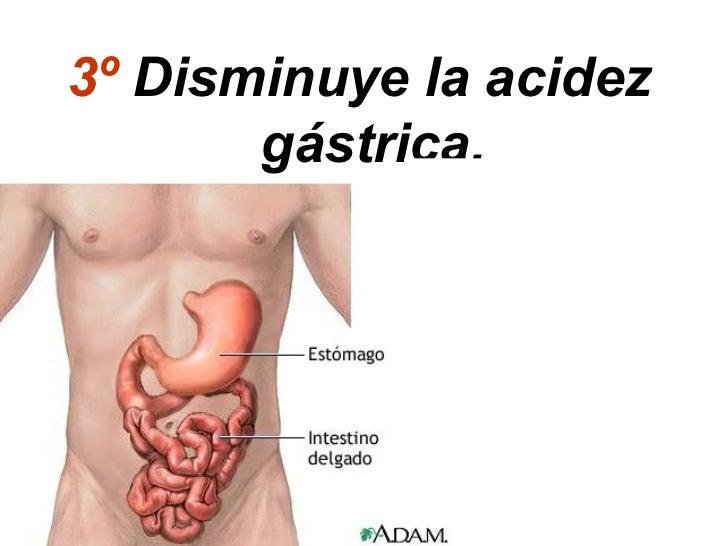 3º Disminuye la acidez       gástrica.