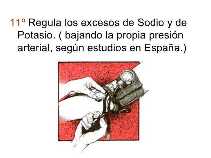 11º Regula los excesos de Sodio y de Potasio. ( bajando la propia presión arterial, según estudios en España.)