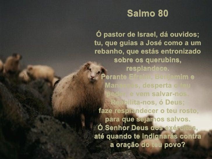 Salmo 80 Ó pastor de Israel, dá ouvidos; tu, que guias a José como a um rebanho, que estás entronizado sobre os querubins,...