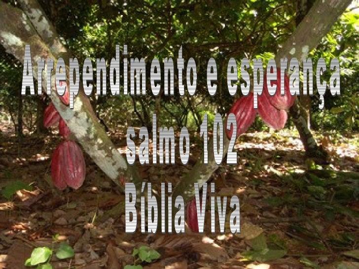 Arrependimento e esperança salmo 102  Bíblia Viva