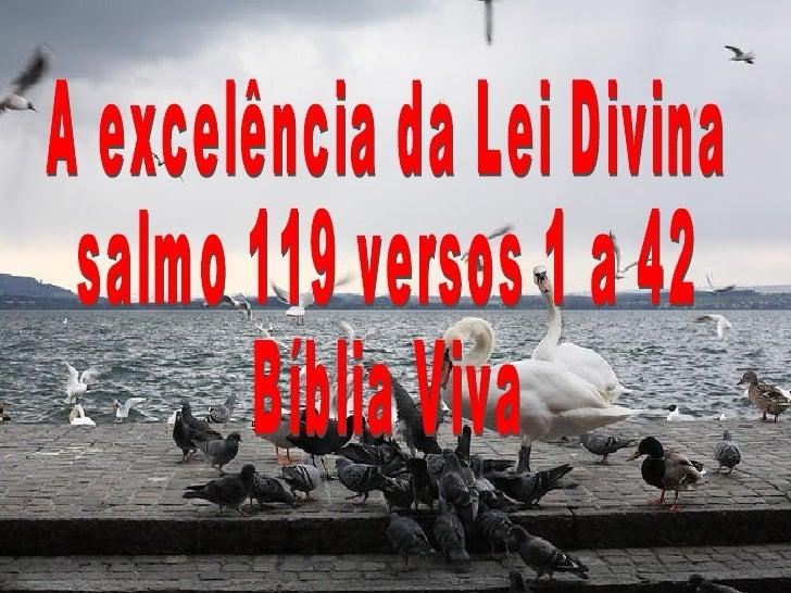 A excelência da Lei Divina salmo 119 versos 1 a 42  Bíblia Viva