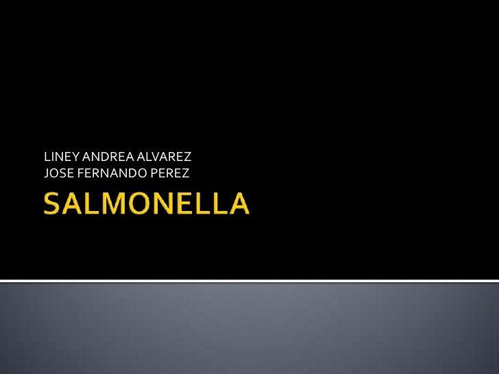 SALMONELLA<br />LINEY ANDREA ALVAREZ<br />JOSE FERNANDO PEREZ<br />