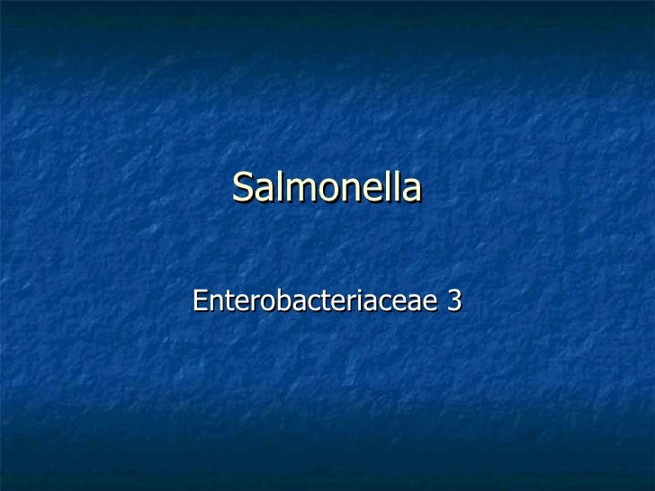 Salmonella Enterobacteriaceae 3