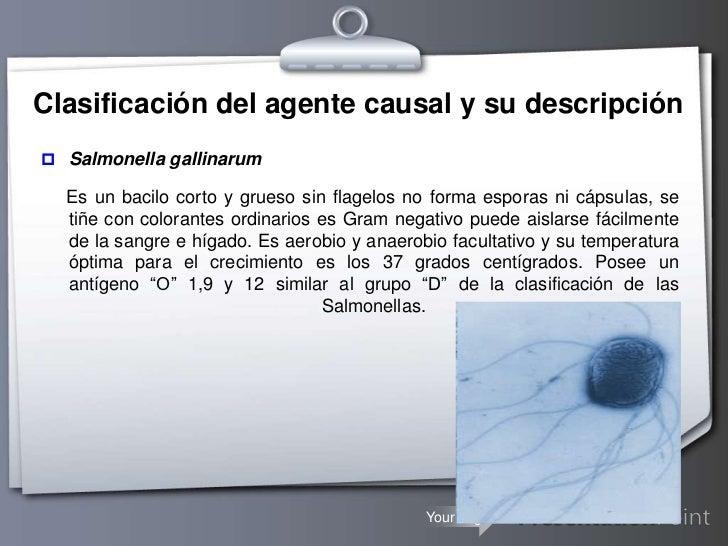 ENFERMEDADES OCUPACIONALES INFECTO - CONTAGIOSAS QUE PUEDEN AFECTAR A LOS  TRABAJADORES DE LA SALUD