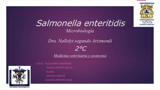 Salmonella enteritidis Microbiología Dra. Nallelyt segundo Arizmendi 2°C Medicina veterinaria y zootecnia E.MVZ : ALEJANDR...