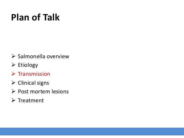Plan of Talk  Salmonella overview  Etiology  Transmission  Clinical signs  Post mortem lesions  Treatment