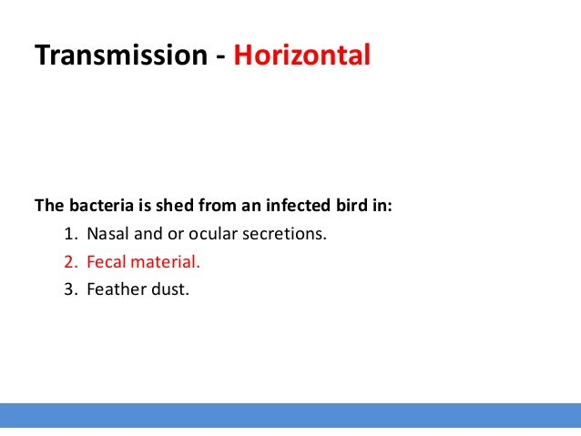 Transmission - Horizontal The bacteria is shed from an infected bird in: 1. Nasal and or ocular secretions. 2. Fecal mater...