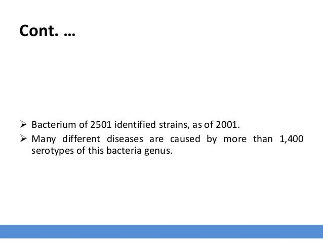 Cont. …  Bacterium of 2501 identified strains, as of 2001.  Many different diseases are caused by more than 1,400 seroty...