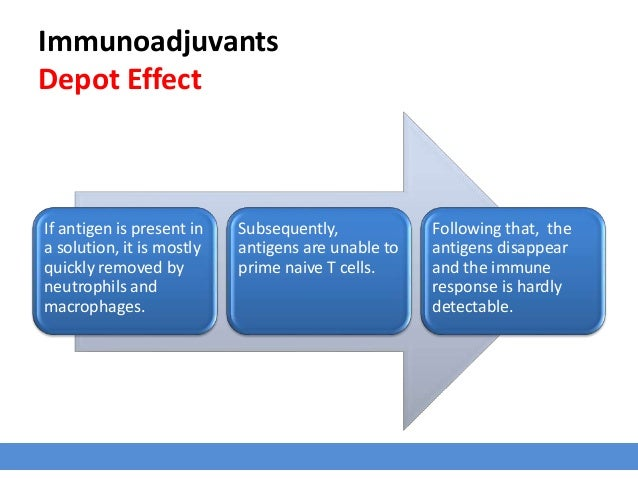 Immunoadjuvants Depot Effect If antigen is present in a solution, it is mostly quickly removed by neutrophils and macropha...