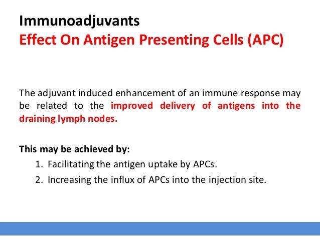 Immunoadjuvants Effect On Antigen Presenting Cells (APC) The adjuvant induced enhancement of an immune response may be rel...