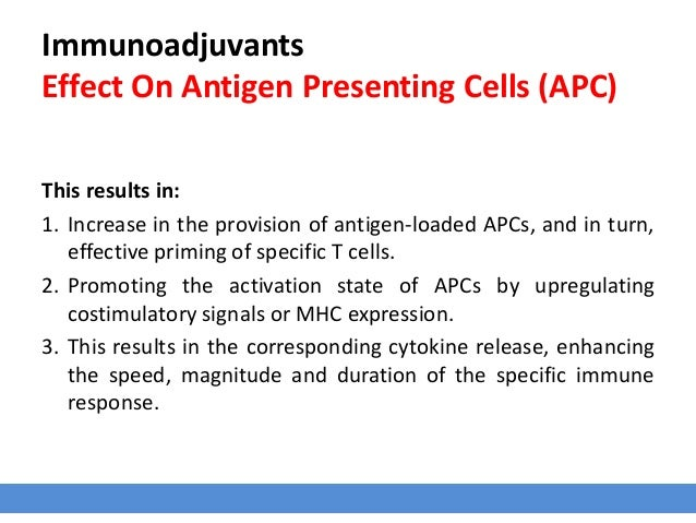 Immunoadjuvants Effect On Antigen Presenting Cells (APC) This results in: 1. Increase in the provision of antigen-loaded A...