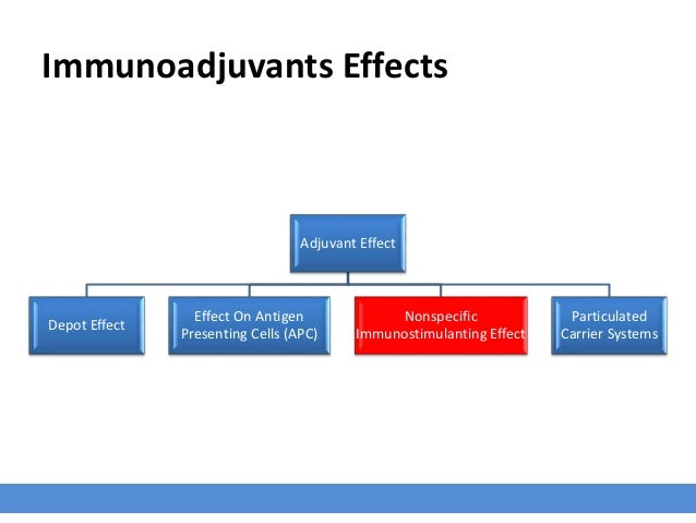Immunoadjuvants Effects Adjuvant Effect Depot Effect Effect On Antigen Presenting Cells (APC) Nonspecific Immunostimulanti...