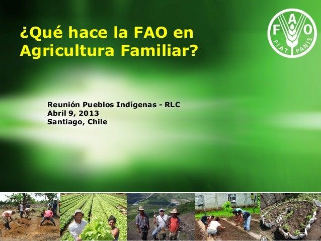 Reunión Pueblos Indígenas - RLC Abril 9, 2013 Santiago, Chile ¿Qué hace la FAO en Agricultura Familiar?