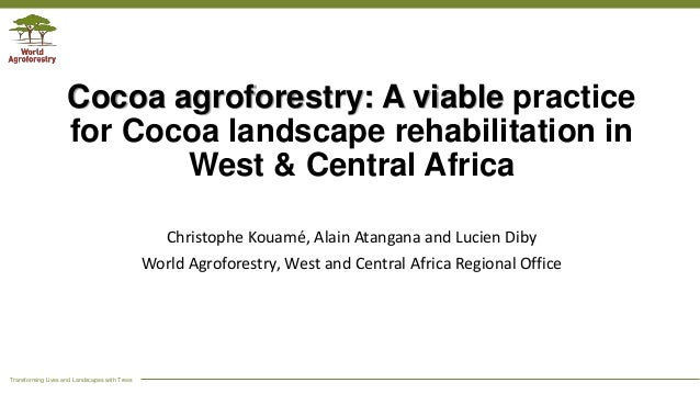Transforming Lives and Landscapes with Trees Cocoa agroforestry: A viable practice for Cocoa landscape rehabilitation in W...