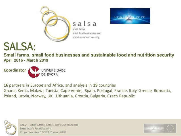 SALSA - Small Farms, Small Food Businesses and Sustainable Food Security Project Number 677363 Horizon 2020 SALSA: Small f...