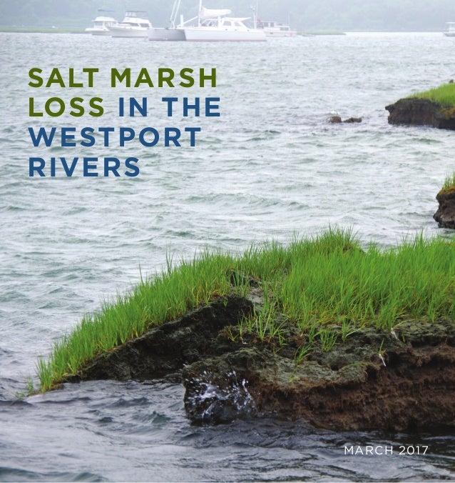 SALT MARSH LOSS IN THE WESTPORT RIVERS MARCH 2017