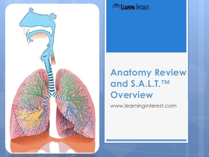 Anatomy Reviewand S.A.L.T.™Overviewwww.learninginterest.com
