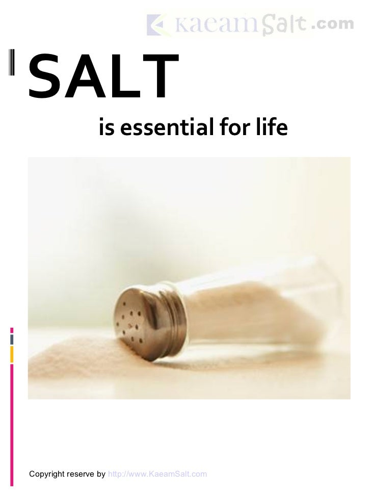 SALT                 is essential for lifeCopyright reserve by http://www.KaeamSalt.com