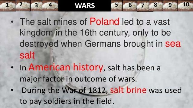 salt a world history summary
