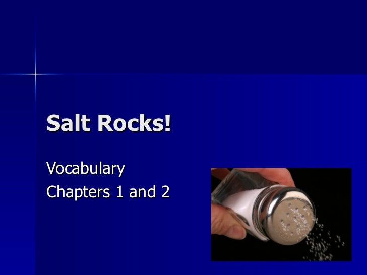 Salt Rocks!VocabularyChapters 1 and 2