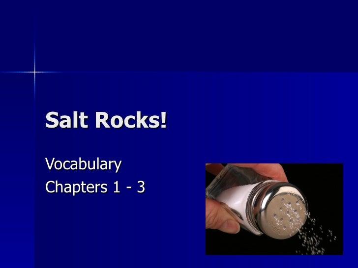 Salt Rocks!VocabularyChapters 1 - 3
