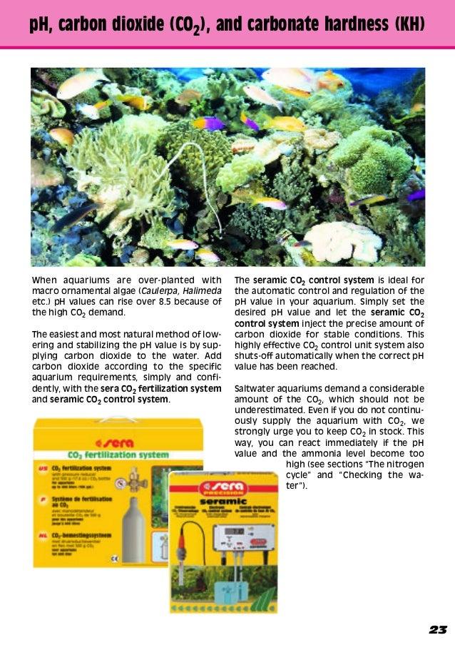 Doug Monahan Recommends This Saltwater Aquarium Guide