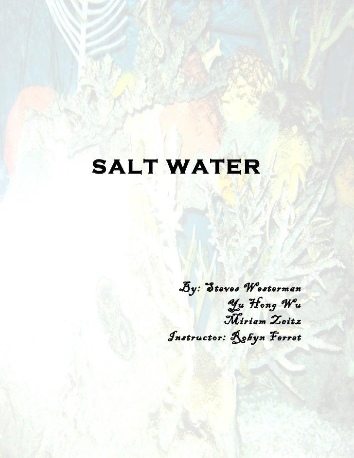 SALT WATER      By: Steves Westerman               Yu Hong Wu              Miriam Zeitz    Instructor: Robyn Ferret