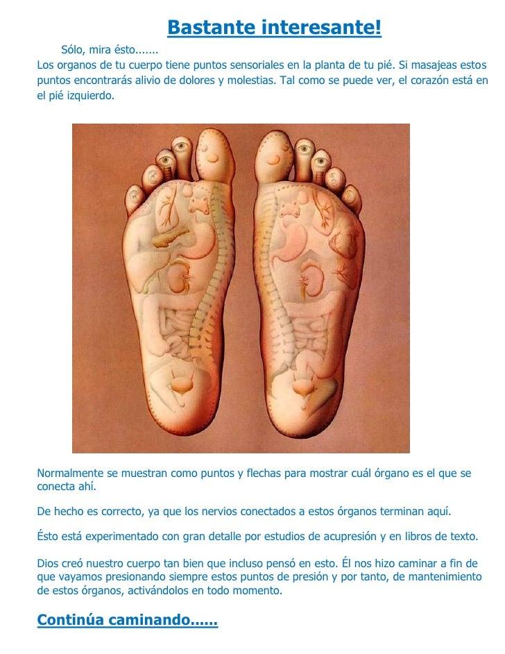 Bastante interesante!       Sólo, mira ésto....... Los organos de tu cuerpo tiene puntos sensoriales en la planta de tu pi...