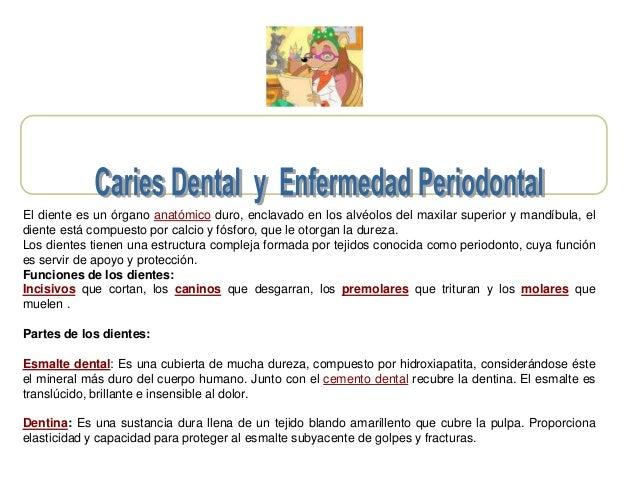 El diente es un órgano anatómico duro, enclavado en los alvéolos del maxilar superior y mandíbula, el diente está compuest...
