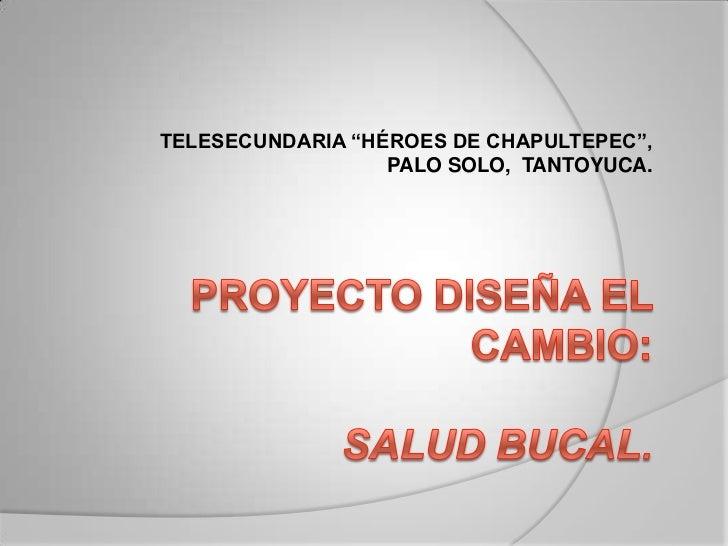 "TELESECUNDARIA ""HÉROES DE CHAPULTEPEC"",                  PALO SOLO, TANTOYUCA."