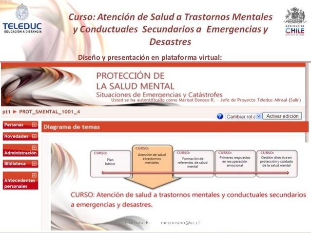 Diseño y presentación en plataforma virtual: Marisol Donoso R. mdonosoro@uc.cl
